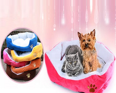 85% OFF Happy Camper Pet Bed. Available in 5 Colors. Only RM23 instead of RM150. Free Delivery to Peninsula Malaysia.